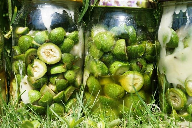 syrop z zielonych orzechów z miodem na ból brzucha