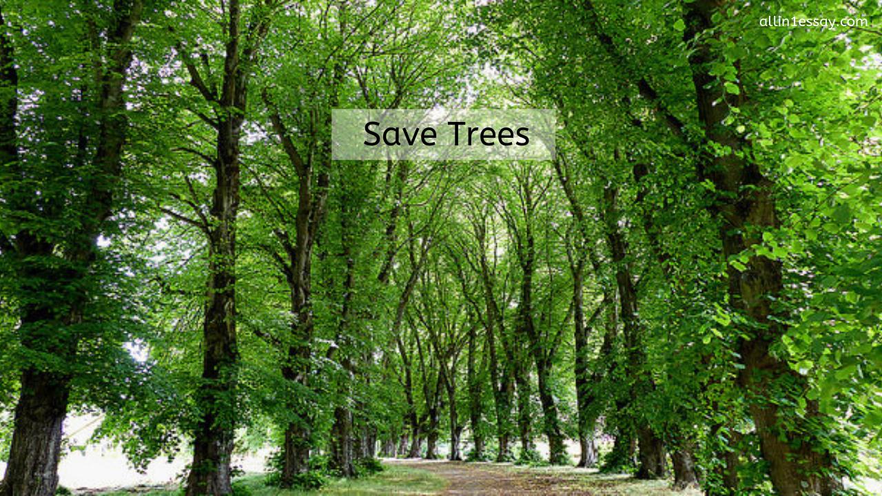 Essay on Save Trees | A complete essay on save trees