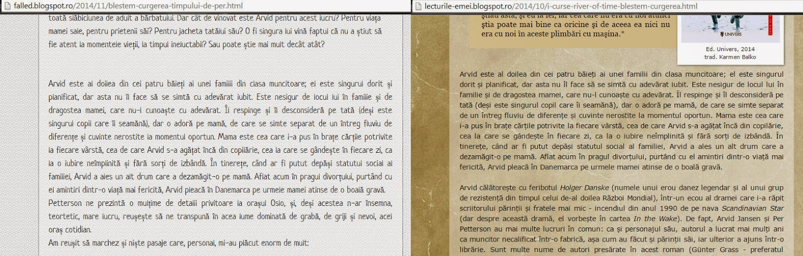 Plagiat pe blogurile de carte