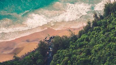 Wallpaper Forest, Beach Waves, Sea, Aerial HD