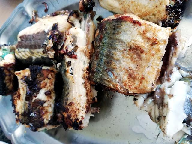 BANDEJA%2B2 - La pesca del pez aguja con señuelos artificiales