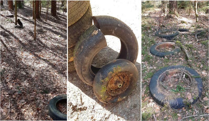 Altreifen- sprich illegale Müllentsorgung in meinem Wald