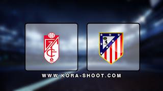 مشاهدة مباراة اتليتكو مدريد وغرناطة بث مباشر 23-11-2019 الدوري الاسباني