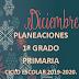PLANEACIÓN DICIEMBRE 1° PRIMARIA CICLO ESCOLAR 2019-2020.
