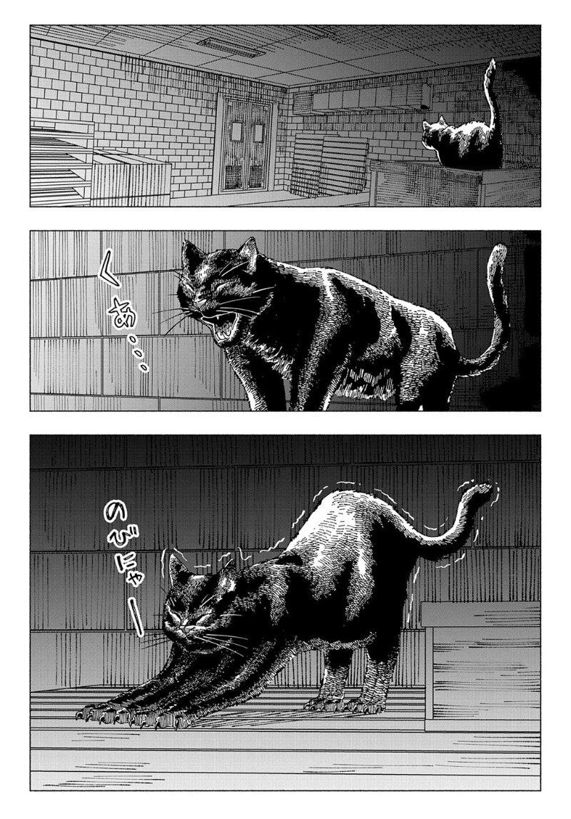 อ่านการ์ตูน Nyaight of the Living Cat ตอนที่ 4 หน้าที่ 16