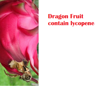Dragon Fruit contain lycopene