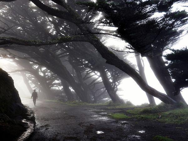 Ainda Que Eu Caminhe Pelo Vale: Devaneios De Um Pregador...: O Vale Da Sombra Da Morte