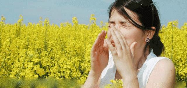 اسباب وعلاج الحساسية الموسمية (حمى القش)