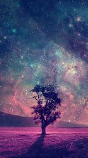 صورة للواتساب خلفية جديدة جميلة