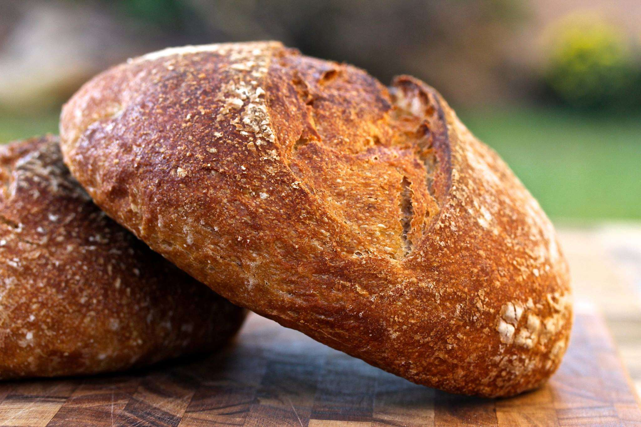 National Homemade Bread Day Wishes Images