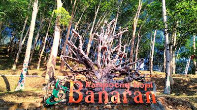 Kampoeng Kopi Banaran outbond