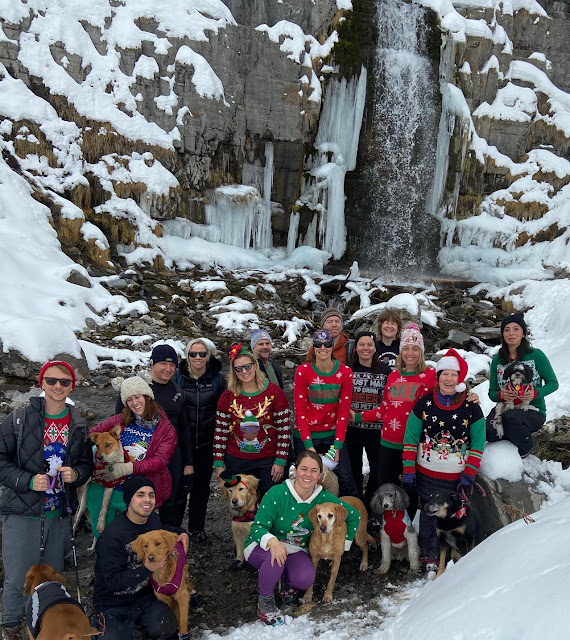 Hiking to Stewart Falls, American Fork Canyon, Sundance Ski Resort, Hiking in Utah with Dogs