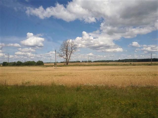 panorama delle campagne lituane dal treno da vilnius a klaipeda