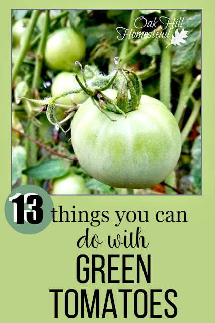 When summer is over, can you save those green tomatoes from freezing? Here are 13 ways you can use green tomatoes.