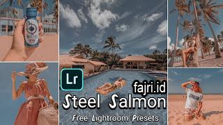 3 Preset xmp Ligtroom Terkece Steel Blue Orange Salmon