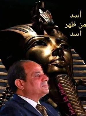 محمد فتحي سعد الدين يكتب خلاصه الكلام ....  الأسد صاحى مش نايم