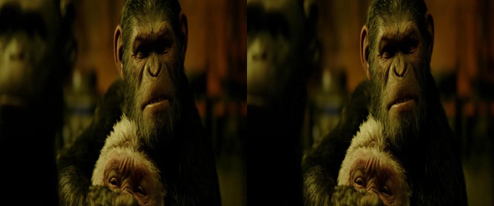 El Planeta de los Simios: La Guerra (2017) 3D SBS 1080p Latino - Ingles captura 2
