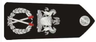 nigerian-police-rank-insignia