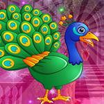 G4K Tranquil Peacock Esca…