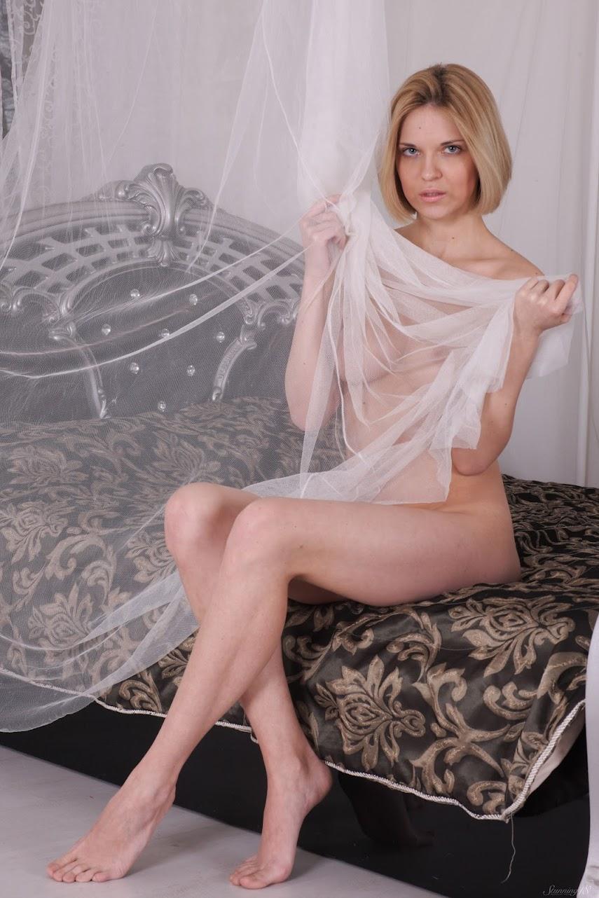 7268589864 [Stunning18] Gwinnett - Silver Canopy Bed