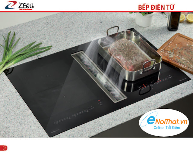 Bếp ga, BẾp điện từ, Quạt hút mùi  ZEGU Trang2