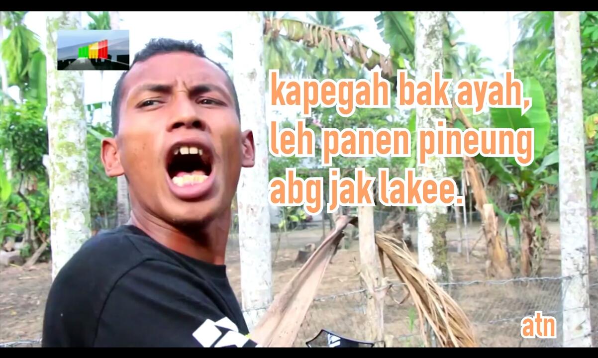 Foto Meme Lucu Bergek UBAT STRESS