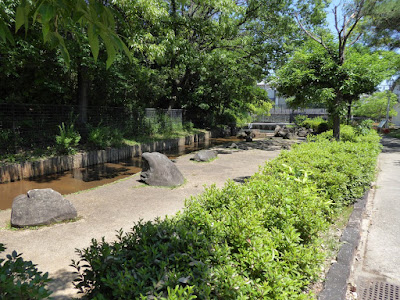 枚方市・市民の森(鏡伝池緑地) せせらぎの森ゾーン
