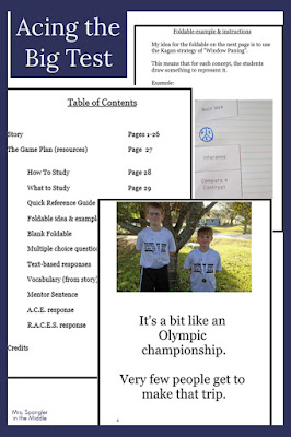 Use this ebook to help your struggling middle schoolers feel excited about showing their best skills on their Big Test!
