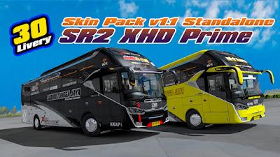 Skin Pack v1.1 SR2 XHD NRS edit Shandy ft Okta next Danies