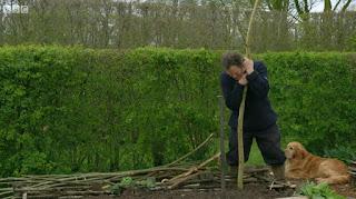 Monty Don Bean Sticks