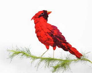 Aves por Red Hong Yi con pétalos de flores