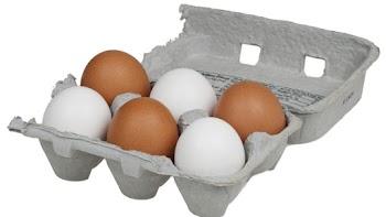 Γιατί μερικά αυγά είναι λευκά και μερικά καφέ;