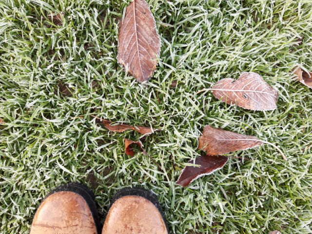 My brown boots on the frosty grass, surrounded by frost-covered leaves