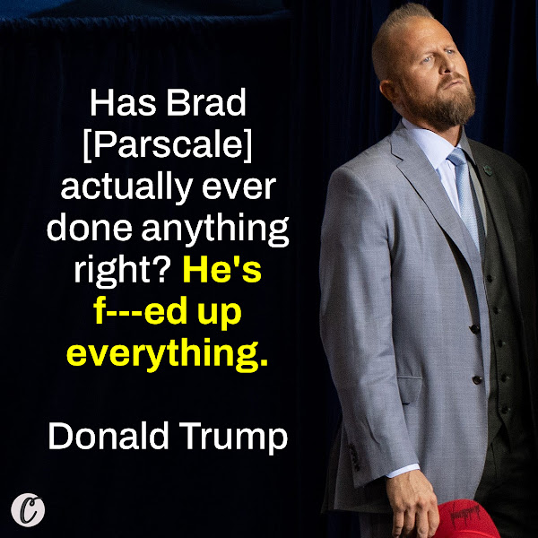 Has Brad actually ever done anything right? He's f---ed up everything. — Donald Trump