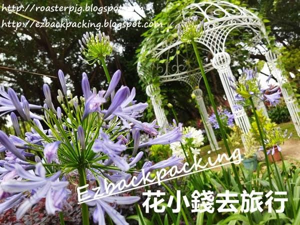 情侶拍拖好去處:紫花浪漫花園