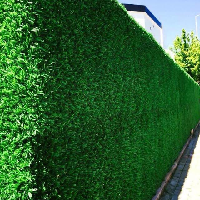 شركة تصميم حدائق منزلية في ينبع