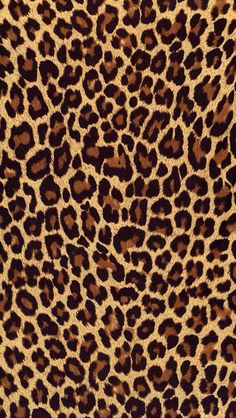 0c3b10e1cb55 Sfondi Leopardati Fucsia - sfondi