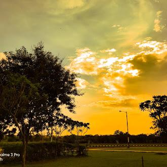 Nature glow | field
