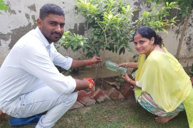 भाई बहन के पावन त्यौहार रक्षाबंधन पर सांसे मुहिम द्वारा पेड़ों को राखी बांधकर मनाया