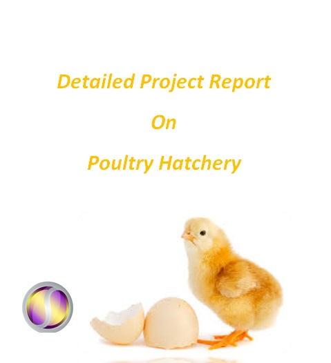 Project Report on Poultry Hatchery