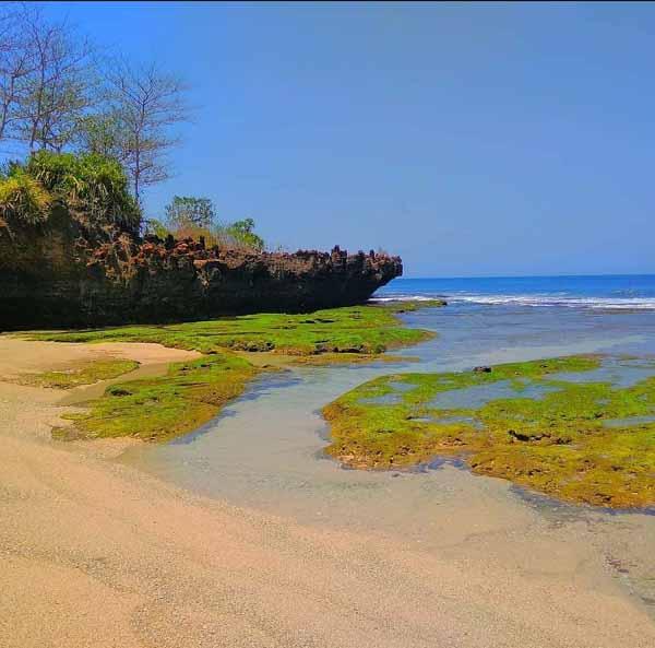 Destinasi Pantai Ombak Tujuh Sukabumi