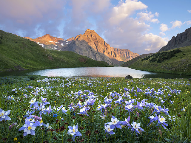 sunrsie with columbines on the middle Blue Lake near Mt. Sneffels wilderness, Colorado