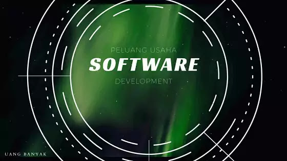 peluang usaha mengembangkan software secara online