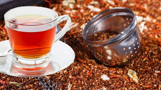 Pros and Cons of Rooibos Tea