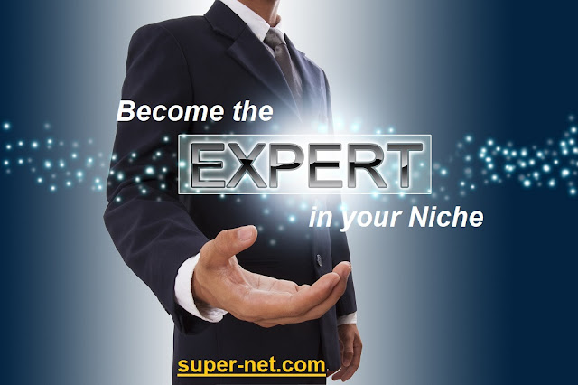 https://www.super-net.com/2018/05/niche-marketing-strategy-guide-acting.html