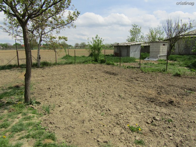 How I built a house in 2 months: Retrospective by Romanian author Cristina G.