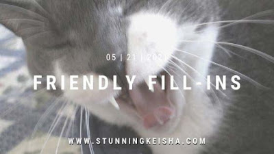 Feral Friday: Counter Kitty