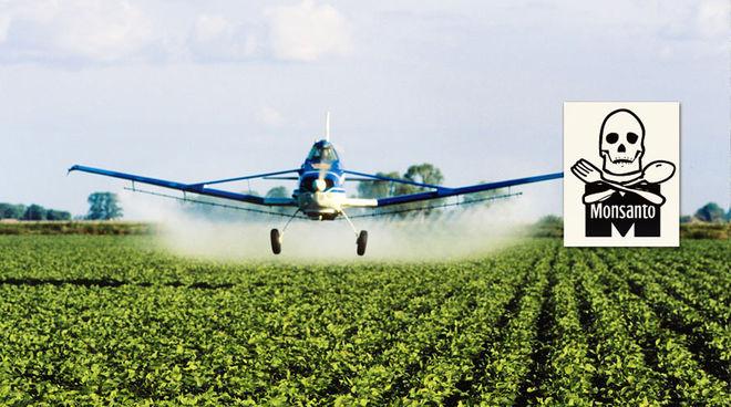 ΗΠΑ: Δικαστήριο  έκρινε το ζιζανιοκτόνο Roundup της Monsanto «ουσιαστικό παράγοντα» καρκίνου