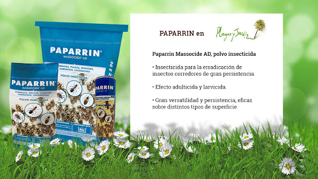 Paparrin insecticida