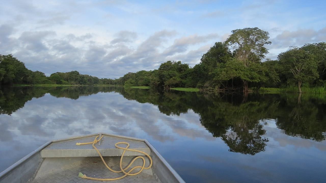 Científicos: «Deben prepararse para la destrucción de la cuenca del Amazonas»